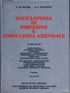 Enciclopedia di Direzione e Consulenza Aziendale 2`