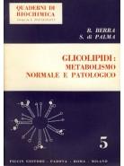 Glicolipidi: Metabolismo Normale e Patologico