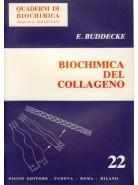 Biochimica del Collageno