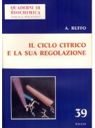 Il Ciclo Citrico e la sua Regolazione