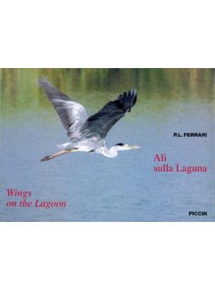 Ali sulla Laguna