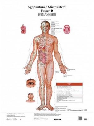 Poster di agopuntura e microsistemi