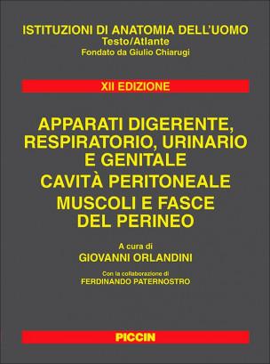 Apparati Digerente, Respiratorio, Urinario e Genitale - Cavità Peritoneale, Muscoli e Fasce del Perineo