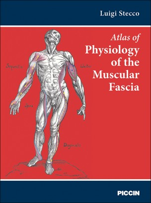 Of physiology of the muscular fascia atlas of physiology of the muscular fascia fandeluxe Gallery