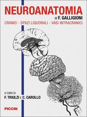 Neuroanatomia di F. Galligioni. Cranio, spazi liquorali, vasi intracranici
