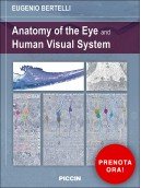 Anatomy of the Eye and Human Visual System