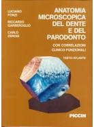 Anatomia Microscopica del Dente e del Parodonto