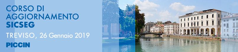 Corso di Aggiornamento SICSEG - 26 Gennaio 2019 - Treviso