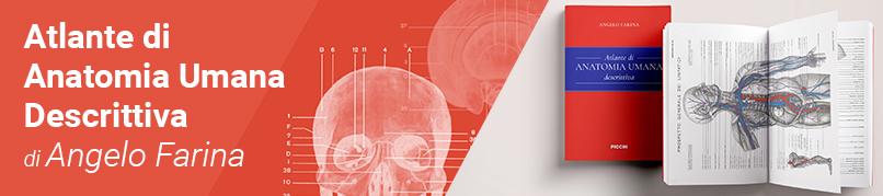 Farina - Atlante di Anatomia Umana Descrittiva